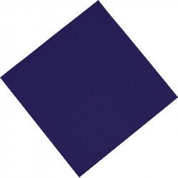 Fasana Professional Tissue Napkin Blue - 330x330mm 2 ply 1/4 fold (Box 1500)
